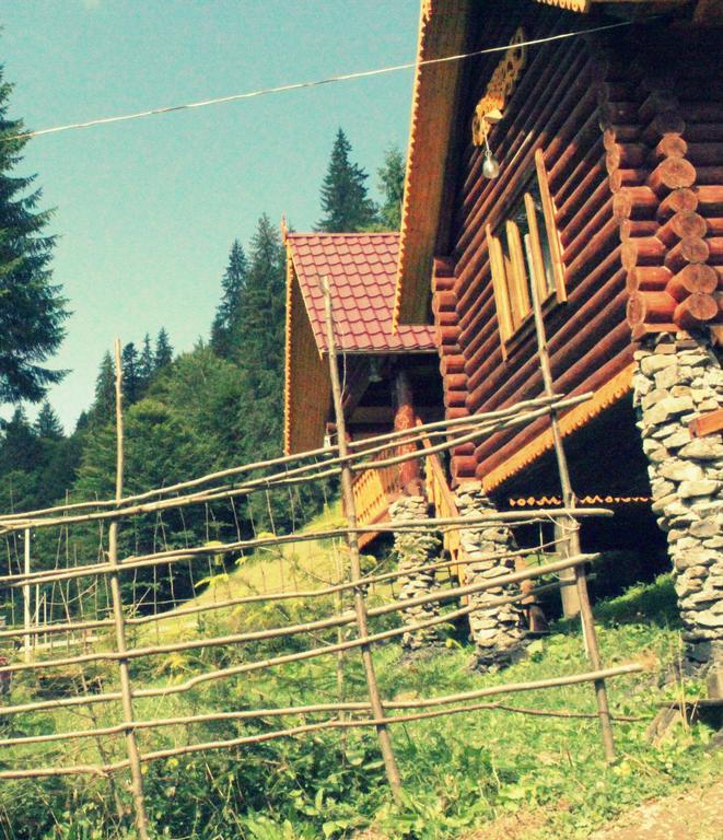Hotel Synevir